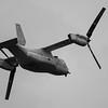V22_Osprey-009_BW