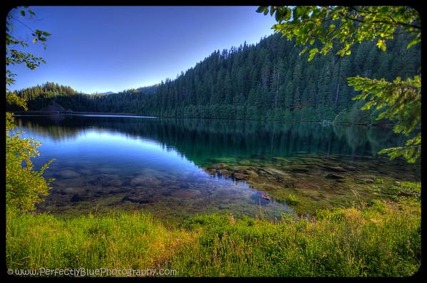 McKenzie River Wilderness