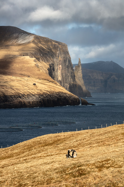 Witches Finger Vagar Faroe Islands Landscape Photography.jpg