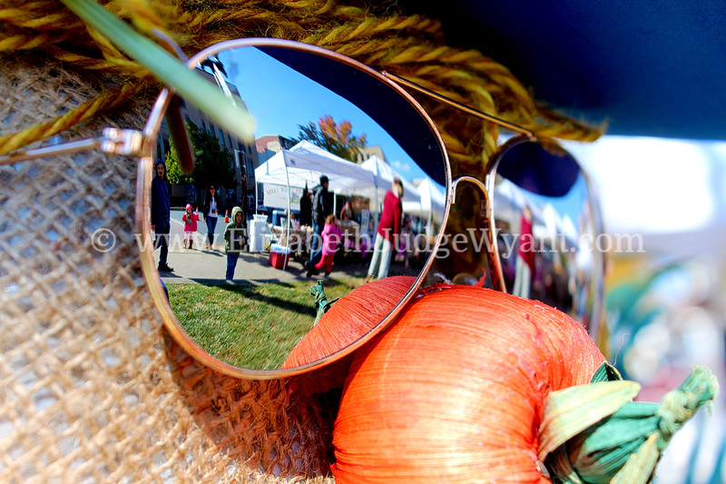 Reflection Scarecrow Festival 2013