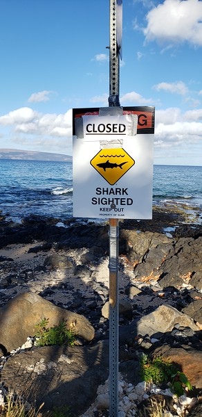 2019 Maui Vacation
