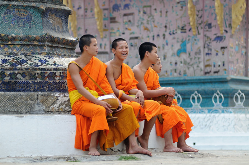 "Junge Mönche vor dem ""Baum des Lebens"" im Tempel Wat Xieng Thong"