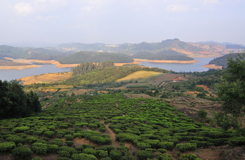 View-from-Red-Hills-Ooty.jpg