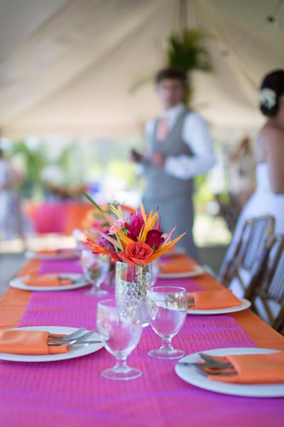gillin beach kauai wedding-20.jpg