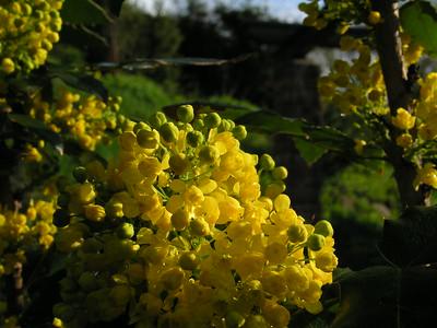 2004-04-28 Garten