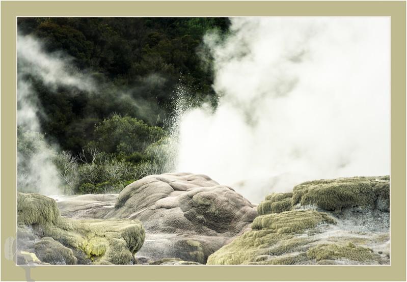 Pohutu Geyser in Te Puia - tripple border