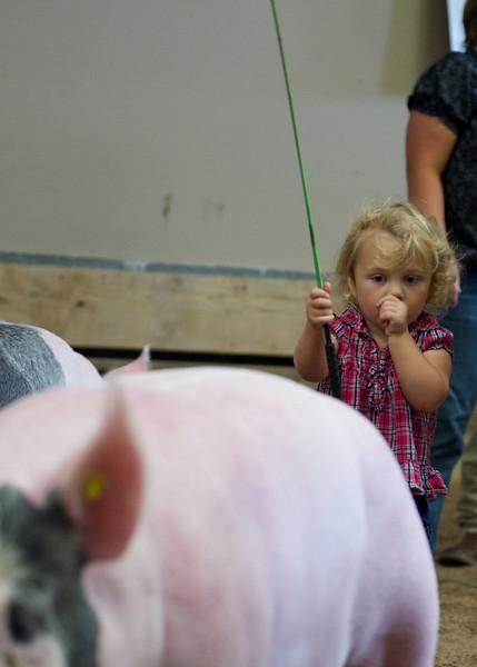Sherman County Fair
