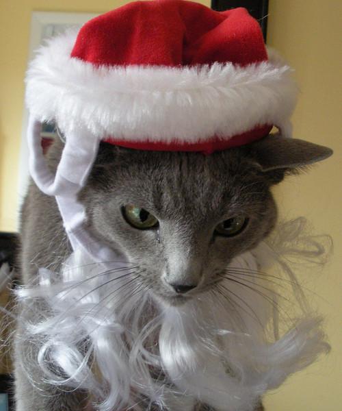 Santa's Not Happy