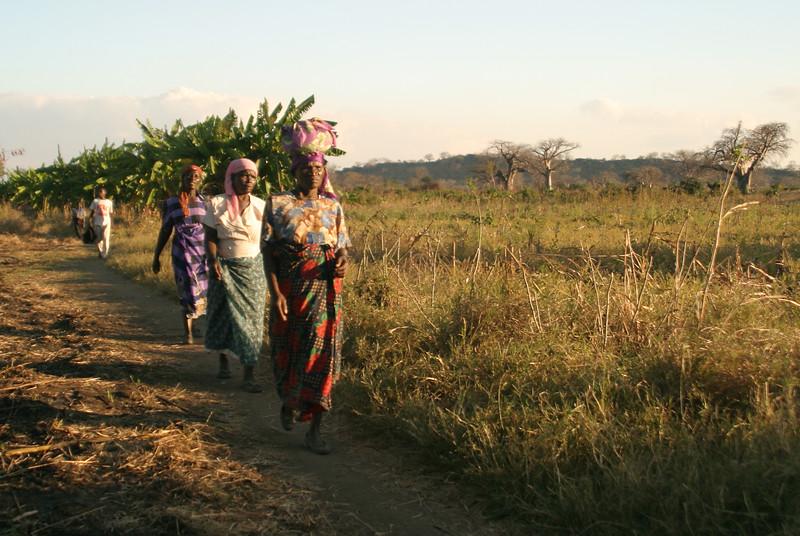 Mangochi - Women Walking.jpg