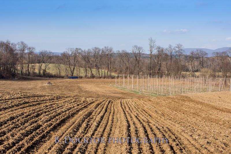 Hudson Valley Hops & Grains-15.jpg
