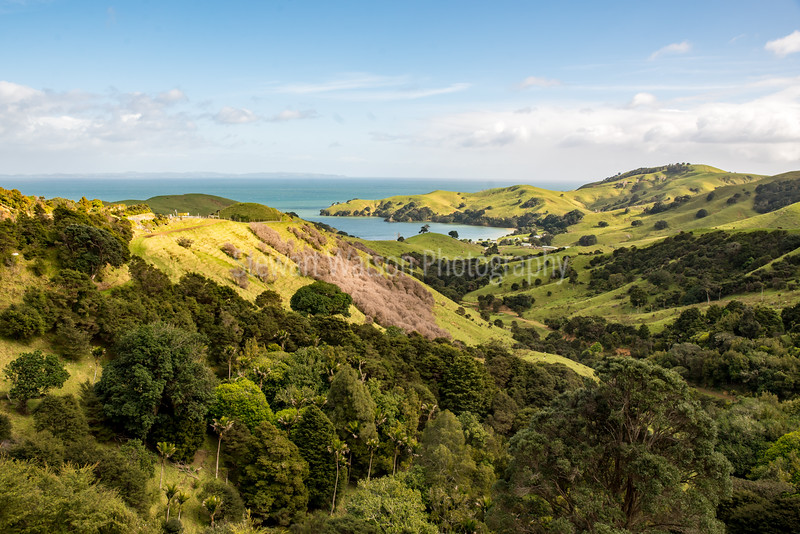 Manaia Saddle Road