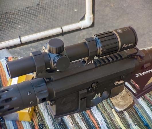 Burris RT-6 on LR-308