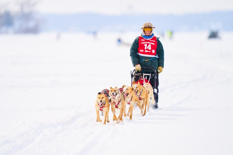 395    RobertEvansImagery.com IG @RobertEvansImagery   Klondike Dog Sled Race 2-9-2020.JPG
