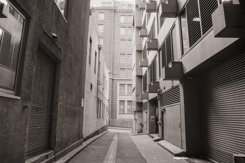 Merlin Alley