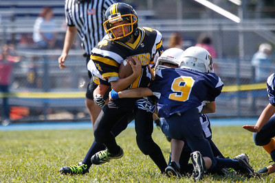09/08/13 Mighty Mites Panthers at Kenilworth Bears