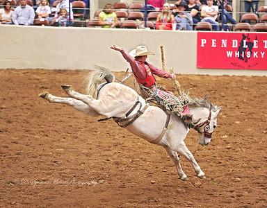 HOT Fair & Rodeo 2013