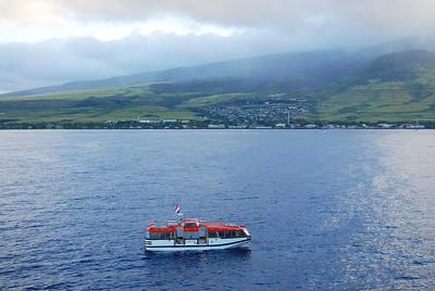 Maui - Wowi