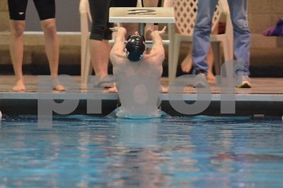 Fort Dodge District  Swimming 2015