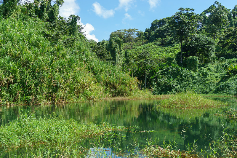 Costa Rica 2015-2496.jpg