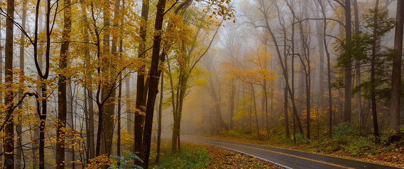 Fall 2015 Roadtrip.... Cades Cove  to Asheville