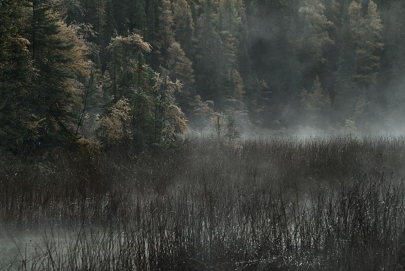 Liard Mist
