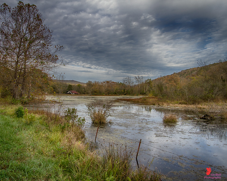 Across Mill Pond