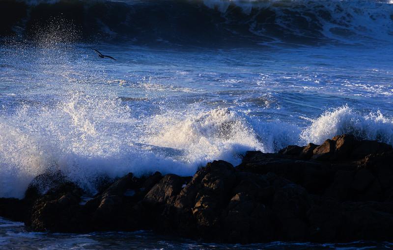Crashing Wave 2, Pescadero State Beach, California, 2010