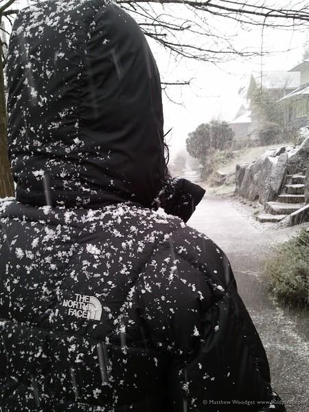 #015 - Blizzard