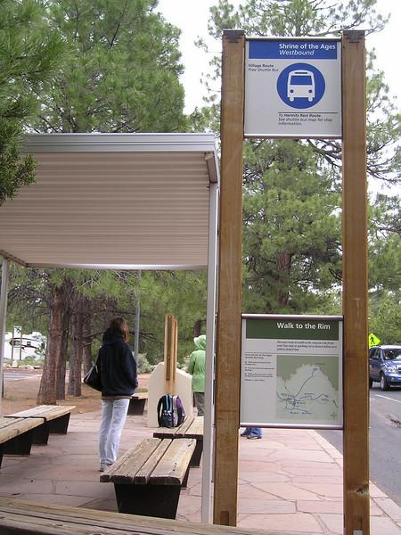 Linda hangs at the shuttle bus stop.
