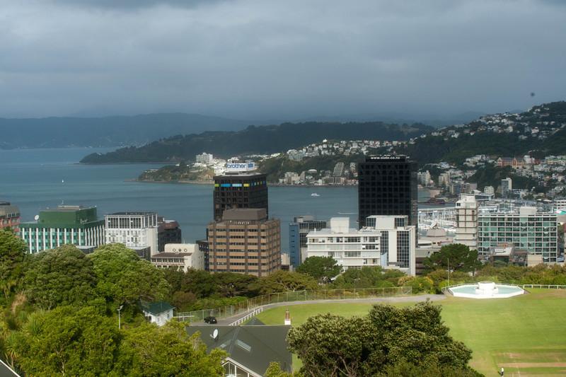 Wellington5620.jpg