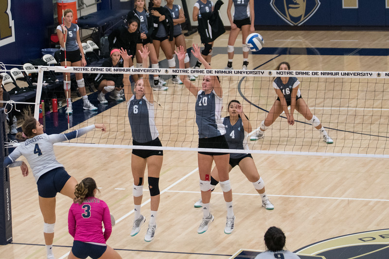 HPU Volleyball-92164.jpg