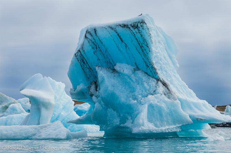 iceland_south-76.jpg