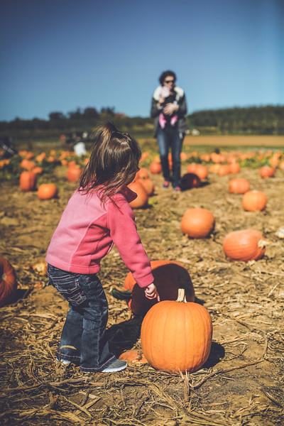 pumpkin picking 10-2016 _IMG_0829.jpg