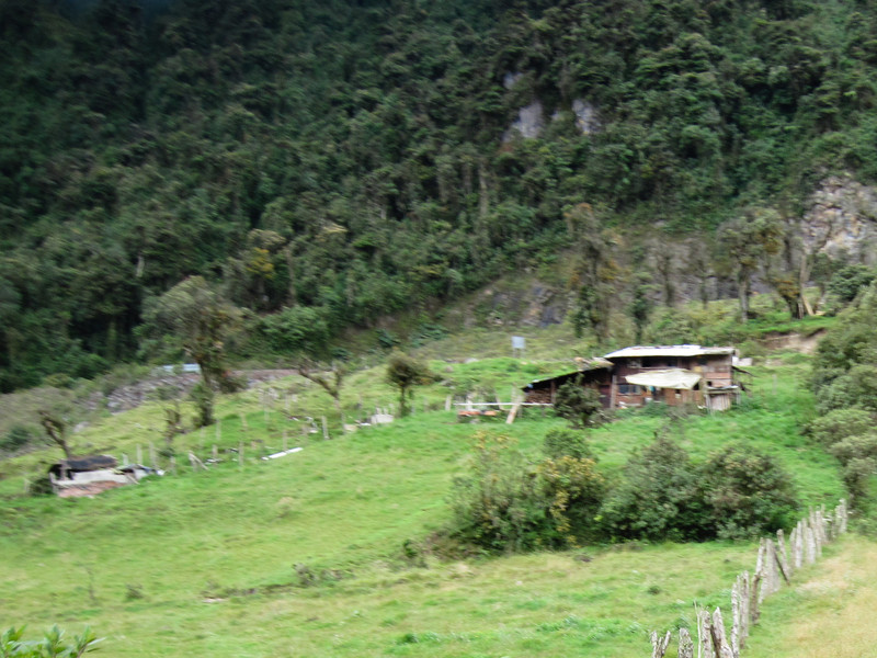 Andean Dwelling