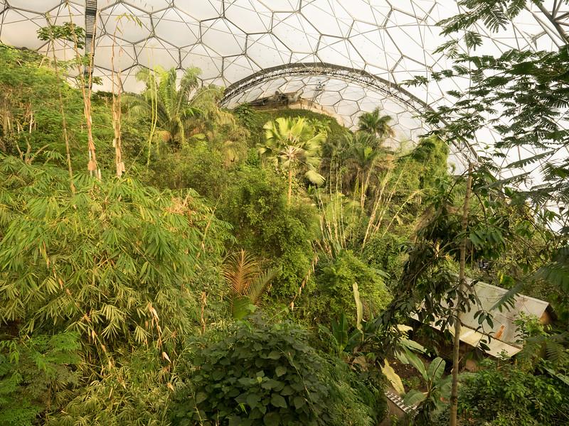 Rain Forest Biodome