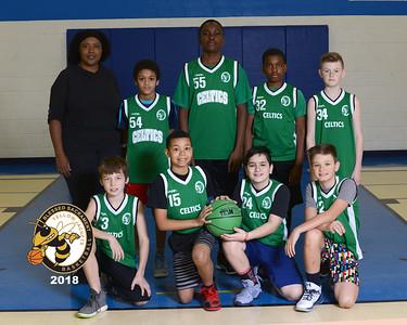 1329-2018-Feb3-Celtics - U11B