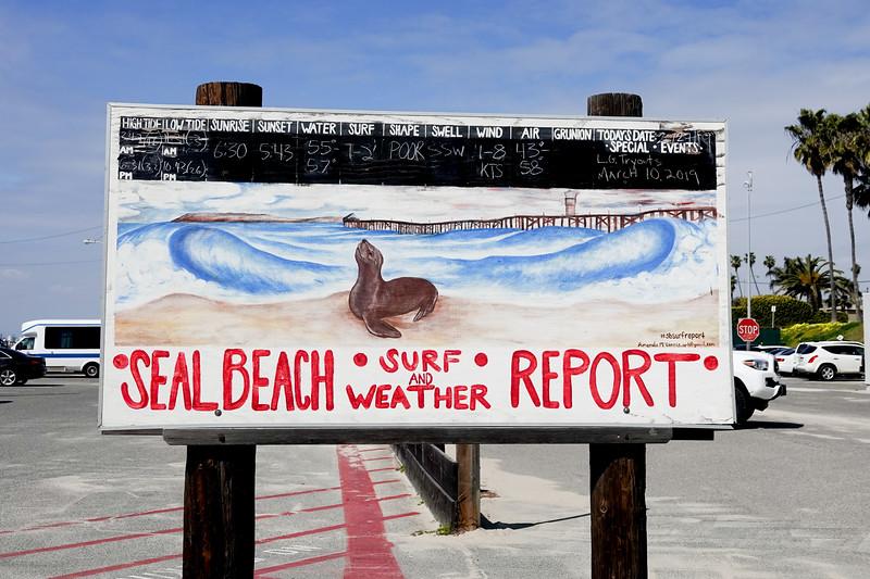 seal beach-028.jpg