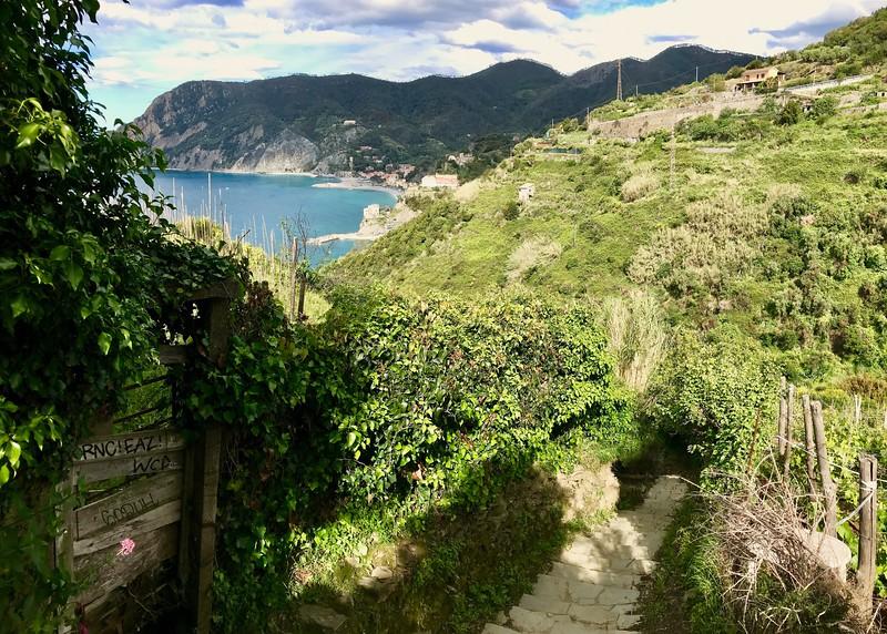 Trail from Vernazza to Monterosso - Cinque Terre