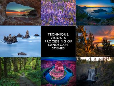 Technique, Vision & Processing of Landscape Scenes