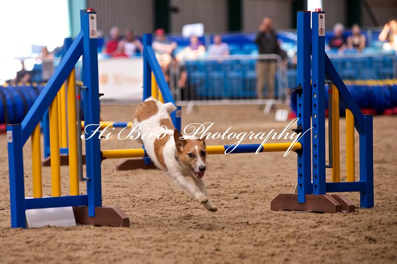 small jump class 1067.jpg