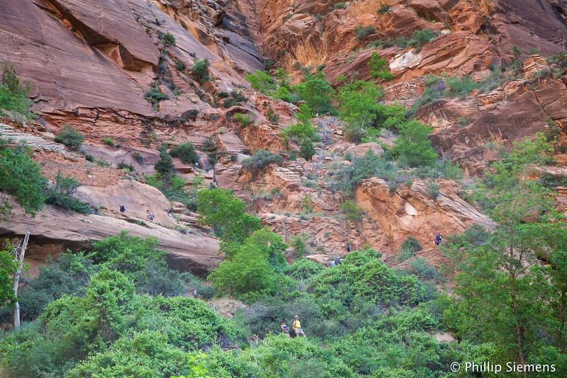 Switchbacks to Refrigerator Canyon