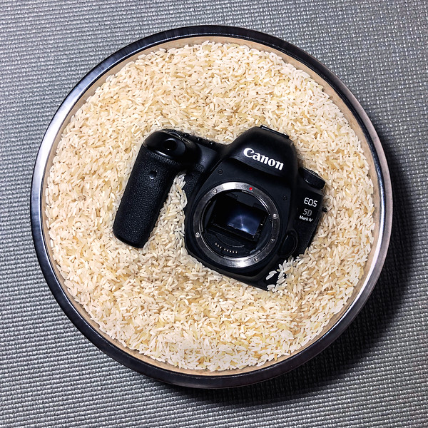 Canon EOS 5D Mk IV Drying in Rice After Getting Submerged in Water