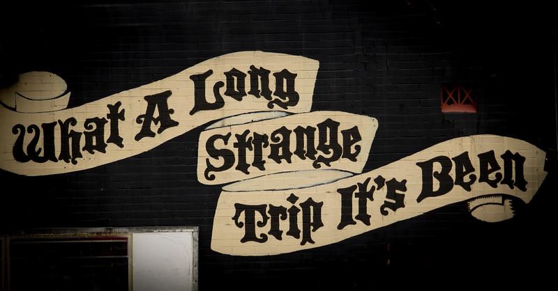 strange-trip.jpg