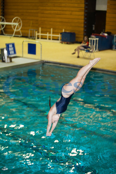 Women's Diving - Emily Wanamaker