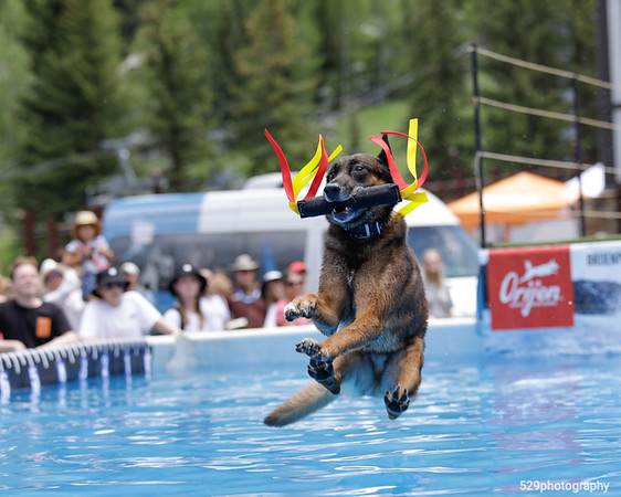 Dockdogs Big Air Competition @ 2021 GoPro Mountain Games