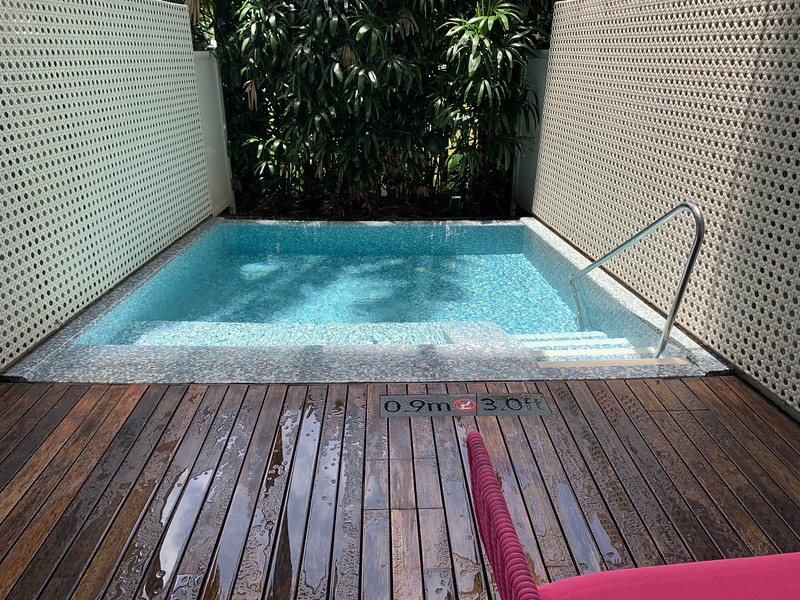 W Sentosa Away Room Plunge Pool