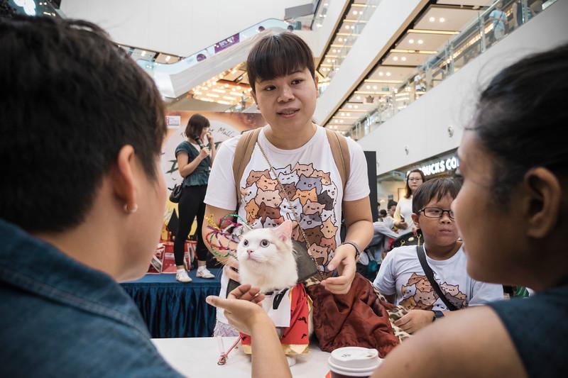 VividSnaps-The-Seletar-Mall-CAT-Dress-Up-Contest-206.jpg