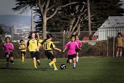 Lynx Soccer 2014