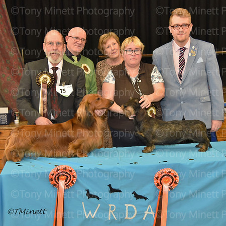 West Riding Dachshund Association March 2018