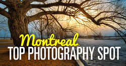 Travel Photography - Montreal